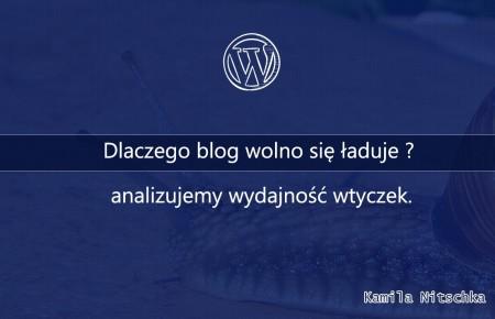 Dlaczego blog wolno się ładuje ? – analizujemy wydajność wtyczek.