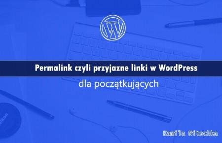 Permalink czyli przyjazne linki w WordPress – dla początkujących