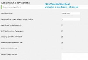 wtyczka-wordpress-kopiowanie-tresci-bloga-2