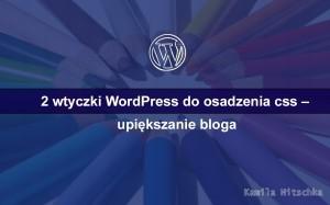 wtyczki wordpress dodanie własnego css